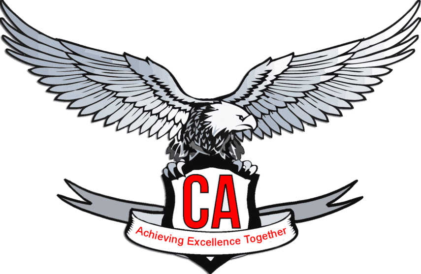 CA Test Series Logo